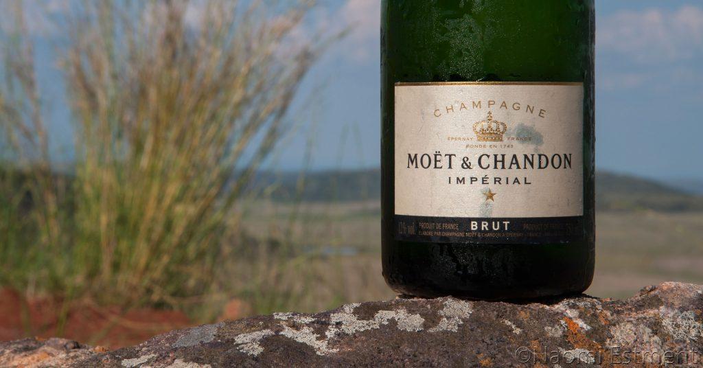 Moet & Chandon Bottle in the Bushveld