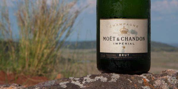 Moet & Chandon Bottle in the Bushveld